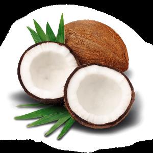 Categoria Olio di cocco